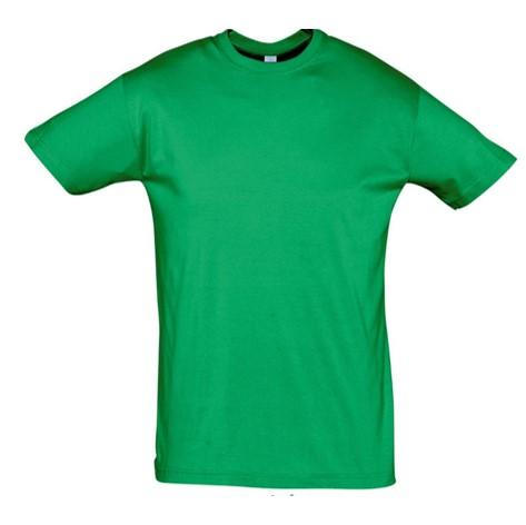 Camiseta Chico Verde Kelly